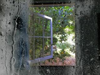 freetoedit rain filter art window